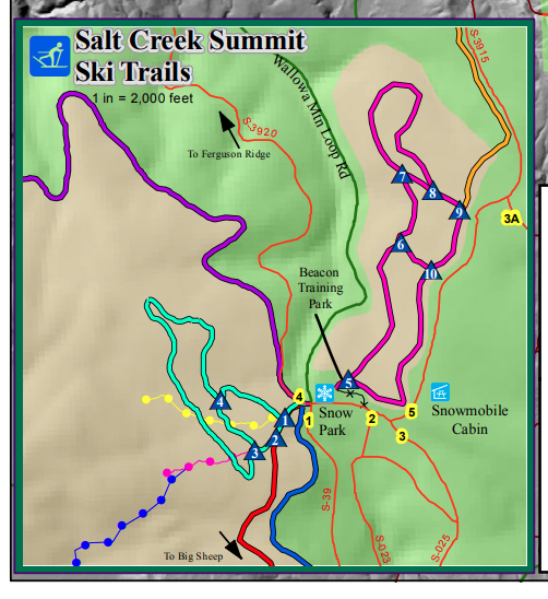 Salt creek summit nordic trails